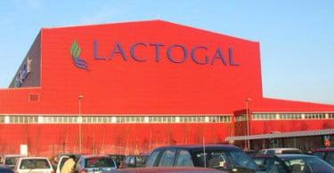 Autoridade da Concorrência multa Lactogal por práticas ilegais