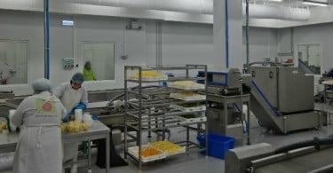 Grupo Luís Vicente investe 2 milhões de euros em nova fábrica de fruta cortada