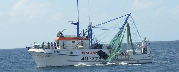 Pescanova lança Camarão de Moçambique Langostino Banana
