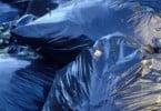 Bruxelas quer reduzir utilização de sacos de plástico