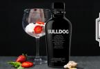Bulldog Gin - masterclass