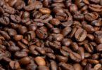 Aldi Nord apoia produção de café sustentável na Colômbia