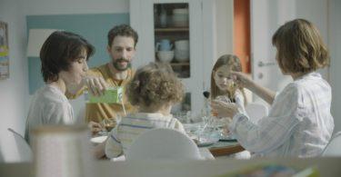 campanhas Mimosa