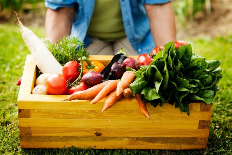 Novo sistema de certificação de produtos biológicos entra em vigor