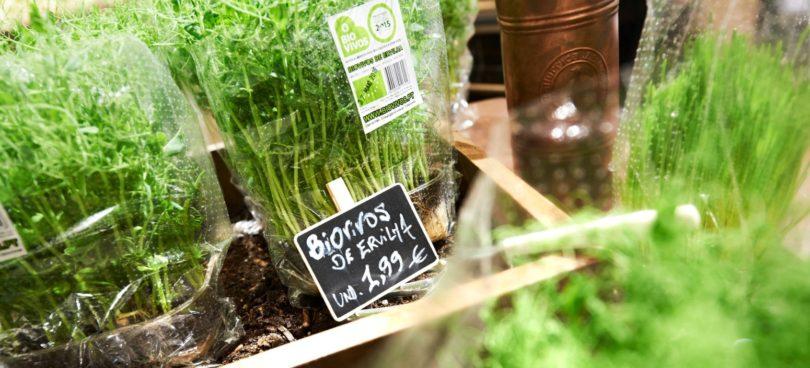Preço continua a ser barreira ao 'consumo consciente'