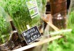 Produtos biológicos: levar o consumo a todos
