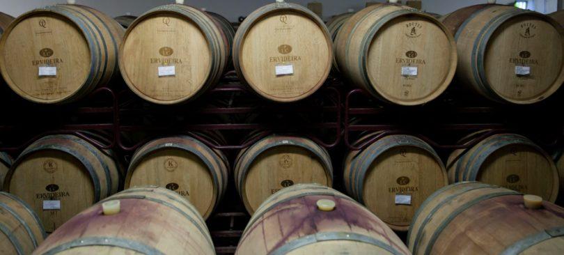 Ervideira lança coleção de vinhos para membros do seu clube