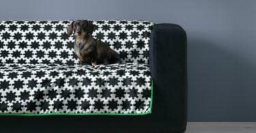 IKEA cria gama para animais em parceria com veterinários