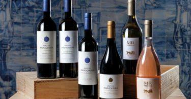 José Maria da Fonseca Distribuição vai comercializar vinhos do Monte da Ravasqueira