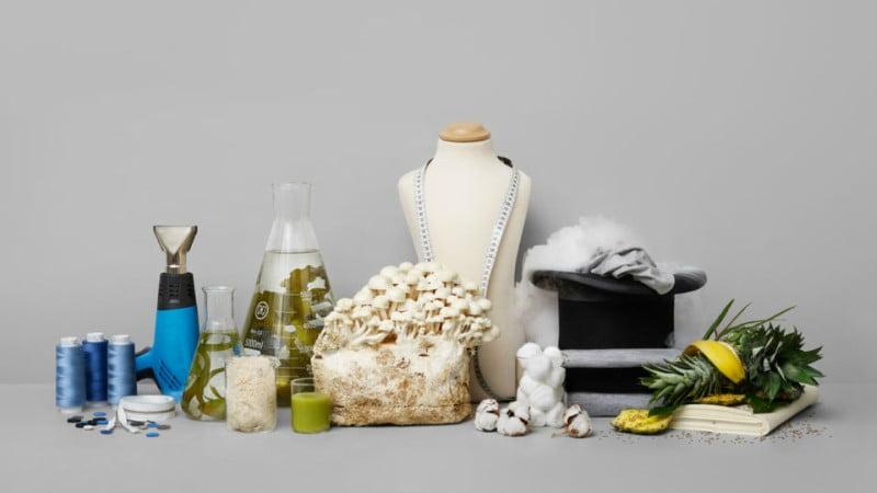 H&M Foundation premeia ideia para criar têxteis com sobras de alimentos