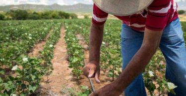 Colaboradores da C&A apoiam desenvolvimento sustentável com 1 M€