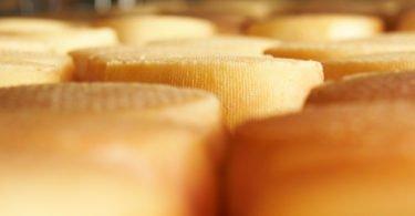 Brasil volta a produzir queijo 100% nacional