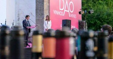 Já são conhecidos os melhores vinhos do Dão