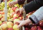 Aprovada lei que obriga cantinas públicas a dar preferência a produtos locais