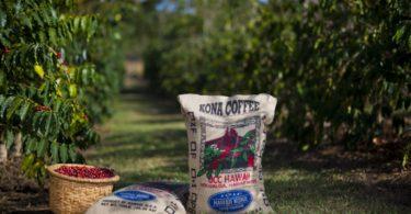 UCC Coffee pretende afirmar-se no mercado português