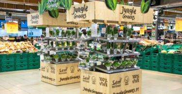 Loja Auchan de Sintra recebe certificação ambiental