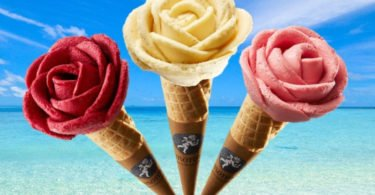 Amorino lança trio de gelados vegan