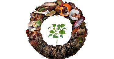 Comissão Europeia adota metodologia comum para prevenir o desperdício alimentar e promover a economia circular