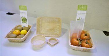 Continente participa no projeto YPACK para encontrar alternativa ao plástico