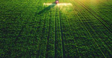 Custos da importação global de alimentos deve diminuir