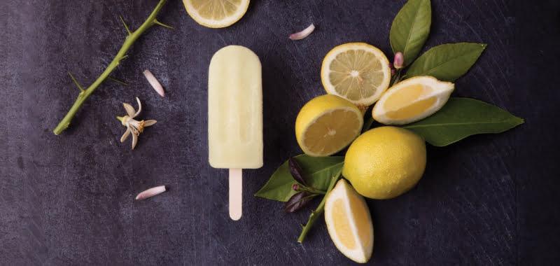 Fragoleto lança gelados sem açúcar no mercado português