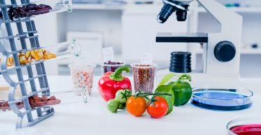 Estudo europeu mostra diferenças nas composições dos alimentos da UE