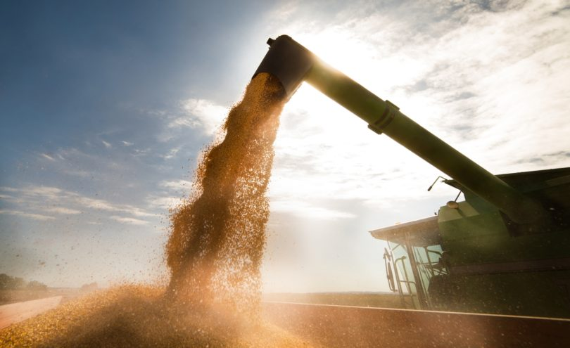 Indústria agro-alimentar portuguesa deverá ultrapassar os 17 mil milhões de euros em volume de negócios