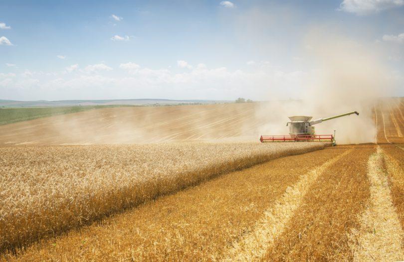 Comércio agroalimentar na UE atinge os 254 mil milhões de euros