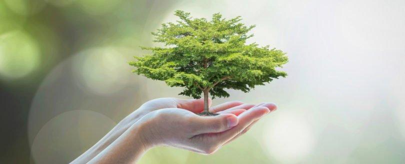 Programa europeu de sustentabilidade vem captar inovação a Portugal