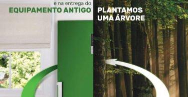 Worten planta 4100 árvores em 2018
