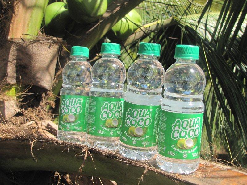 Água de coco brasileira chega a Portugal