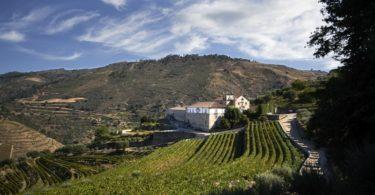 Nasce a Kranemann Wine Estates