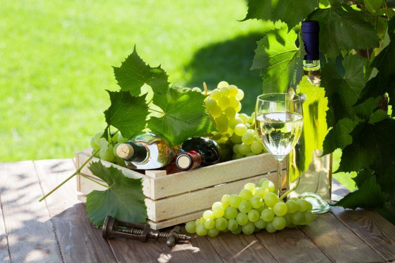 Vinhos de ou para o verão?