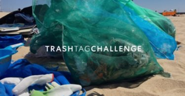 Zippy adere ao 'Trash Tag Challenge'