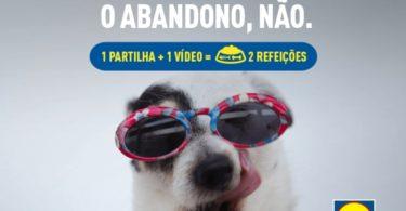 Lidl promove campanha contra o abandono de animais