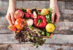 Espanha já representa 30% das exportações de frutas, legumes e flores nacionais