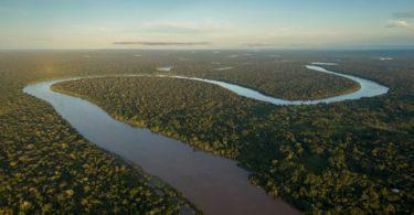 H&M boicota couro brasileiro devido aos incêndios na Amazónia