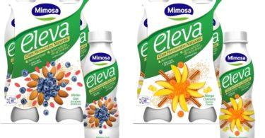 Mimosa Eleva a pensar no novo milénio