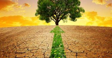 Bruxelas quer mais investimento na proteção do clima