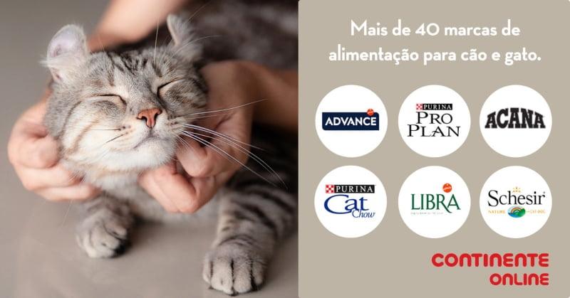 Continente Online reforça oferta de produtos para animais
