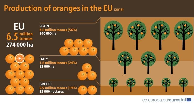 UE produz 6,5 milhões toneladas de laranja em 2018_3