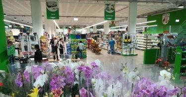 Nova loja para animais e plantas no Funchal