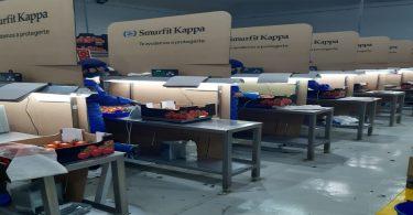 Smurfit Kappa lança gama de soluções para ajudar empresas e ensino a retomar atividade