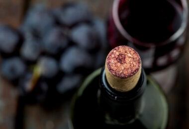Vinho biológico: moda ou novo nicho de mercado?