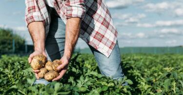 Portugal é o terceiro país com melhor execução dos fundos comunitários para a agricultura