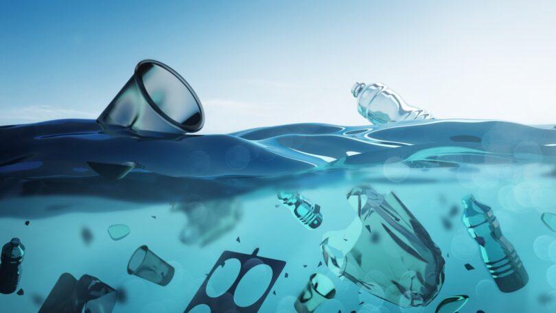 As embalagens de plástico provenientes da comida de takeaway e de bebidas dominam o lixo marítimo revela um estudo espanhol.