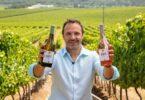 AdegaMãe gama logo identidade gráfica vinho Dory